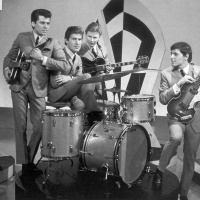 The Searchers - Twist & Shout