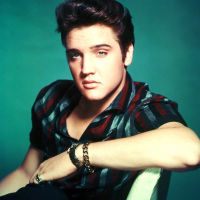 Elvis Presley - I Love You Because