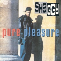 Shaggy - Nice And Lovely