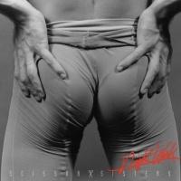 Scissor Sisters - Fire With Fire ( Digital Dog Radio Remix )