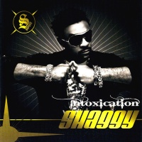 Shaggy - Holla At You