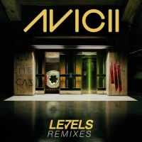 Levels (Cazzette's NYC Mode Mix)