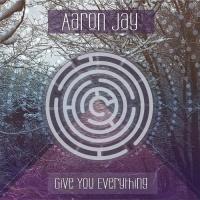 Aaron Jay - Give You Everything (Stupidizko Remix)