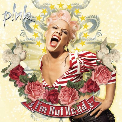 P!NK - Stupid Girls