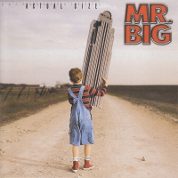 Mr. Big - Shine