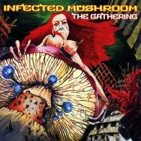 Infected Mushroom - Blue Muppet