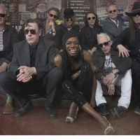Alabama 3 - Ain't Goin' to Goa