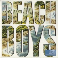 The Beach Boys - Male Ego