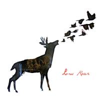 Low Roar - Low Roar (Album)