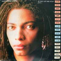 Terence Trent D'Arby - If You Let Me Stay (Single)