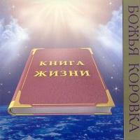 Божья Коровка - Книга Жизни