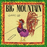 Big Mountain - Wake Up (Album)