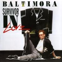 Survivor In Love