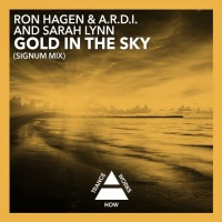 A.R.D.I. - Gold In The Sky (Signum Dub)