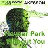 Björn Åkesson - Without You / Flavour Park (Single)