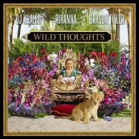 DJ Khaled - Wild Thoughts