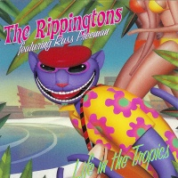 The Rippingtons - Life In The Tropics