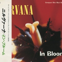 Nirvana - In Bloom (Single)