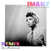 Imany - The Good The Bad & The Crazy (DJ Aristocrat Remix)