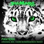 Wonder Element - Pantera (Vadim Bonkrashkov Remix)