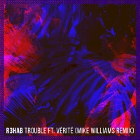 Trouble (Mike Williams Remix)