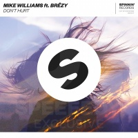 Mike Williams - Don't Hurt