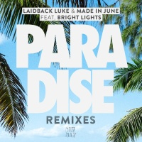 Laidback Luke - Paradise (Niko The Kid Remix)