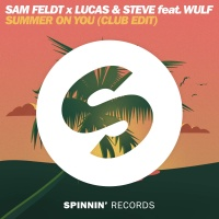Sam Feldt - Summer On You