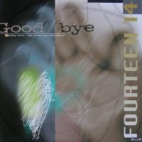 Fourteen 14 - Goodbye