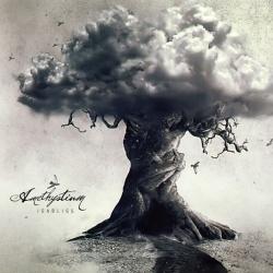 Amethystium - La Pluie