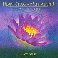 Karunesh - Heart Chakra Meditation II: Coming Home