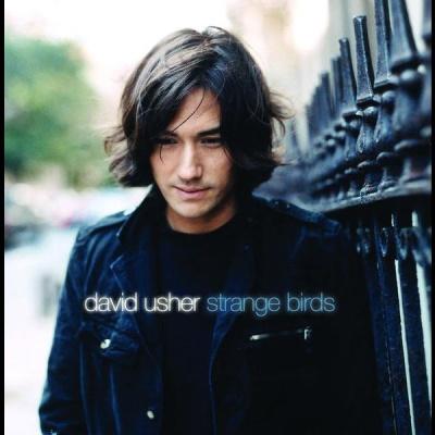 David Usher - Strange Birds