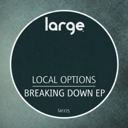 Local Options - Losing You