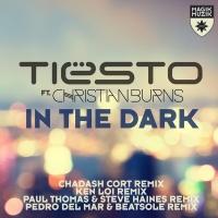 Tiësto* - In The Dark (Pedro Del Mar & Beatsole Remix)