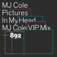 MJ Cole - Pictures In My Head [VIP]