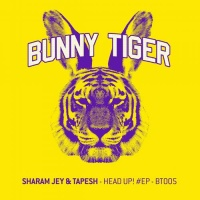 Sharam Jey - Over Me