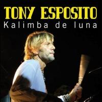 Tony Esposito - Kalimba De Luna (Remix)