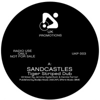 Sandcastles (Tiger Stripes Dub)