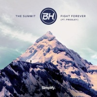 The Bitch Hotel - The Summit / Fight Forever