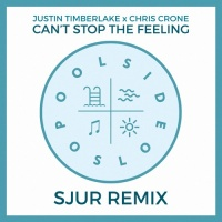 Justin Timberlake - Can't Stop The Feeling (SJUR Remix)