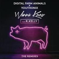 Wanna Know - Remixes