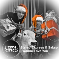 Stereo Express - I Wanna Love You