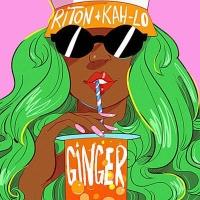 Riton - Ginger