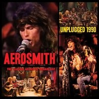 Aerosmith - Unplugged 1990