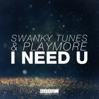 Swanky Tunes - I Need U