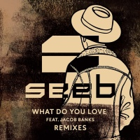 Seeb - What Do You Love (Zonderling Remix)