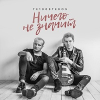 Те100стерон - Ничего Не Значит (Single)