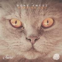 René Amesz - Away