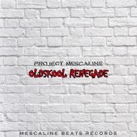 Project Mecaline - Oldskool Renegade (Original Mix)