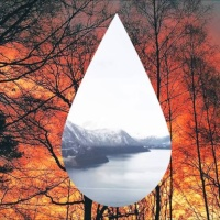 Clean Bandit - Tears - Single